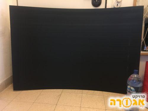 פוליגל שחור גדול