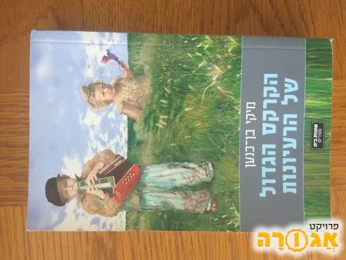 ספר קריאה - מיקי בן כנען
