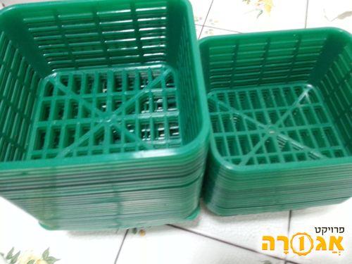 סלסלות פלסטיק של פטריות