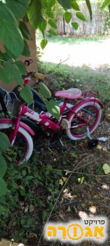 אפניים לילדים