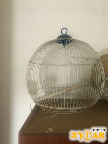 כלוב ציפורים