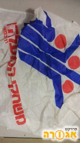 דגל משחקי הפועל ה - 13